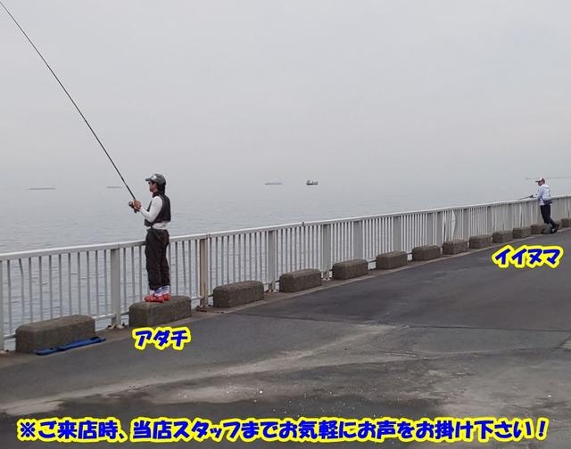 海浜 公園 釣り 高洲