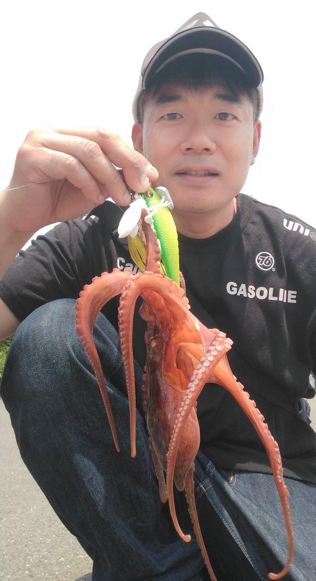釣り 東京 湾 タコ 東京湾の堤防からタコ!神奈川横浜の福浦で初挑戦したよ!